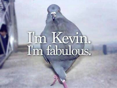 Yeah...I'm fabulous ! What ya gonna do about it?