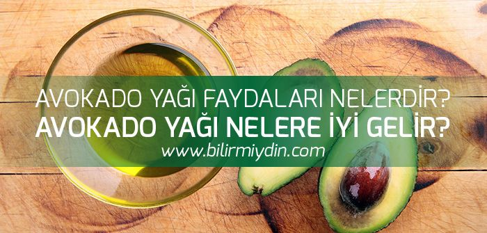 Avokado Yağı Faydaları - http://bilirmiydin.com/avokado-yagi-faydalari/