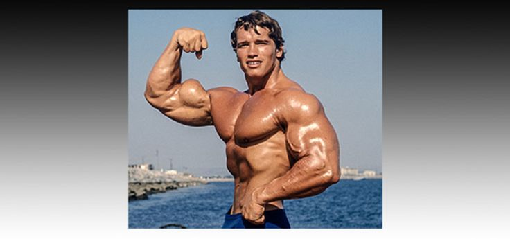 Arnold Schwarzenegger pics, biography, contest history, and more! Learn about your favorite pro bodybuilder.