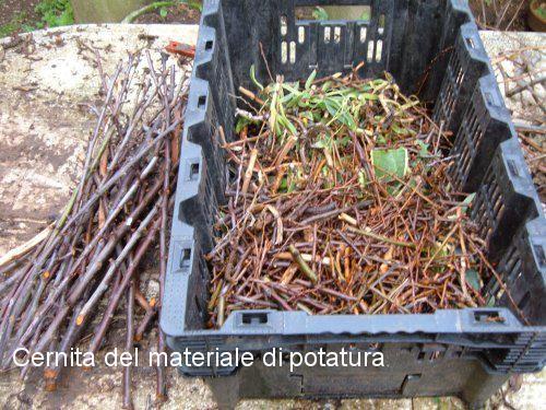 Fare il compost, suggerimenti utili - Coltivare l'orto