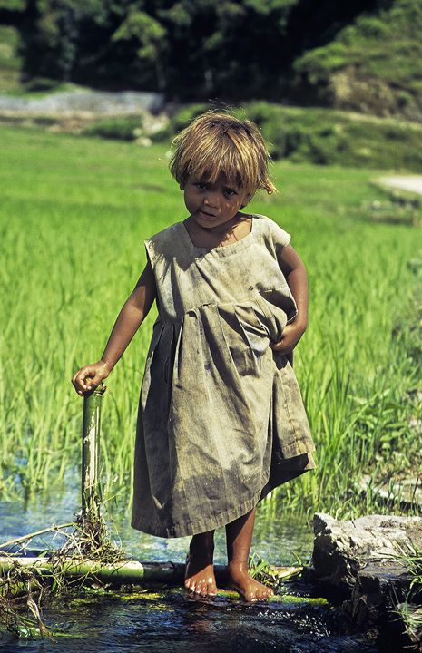 Princess In Rags, Lake Phewa, Pokhara, Nepal, little, girl, exquisite, beauty, olive, rags, irrigation, rice, fields, dy photo
