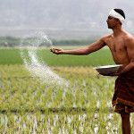 Farmers welfare: What Indian agricultural sector needs to learn from Denmark