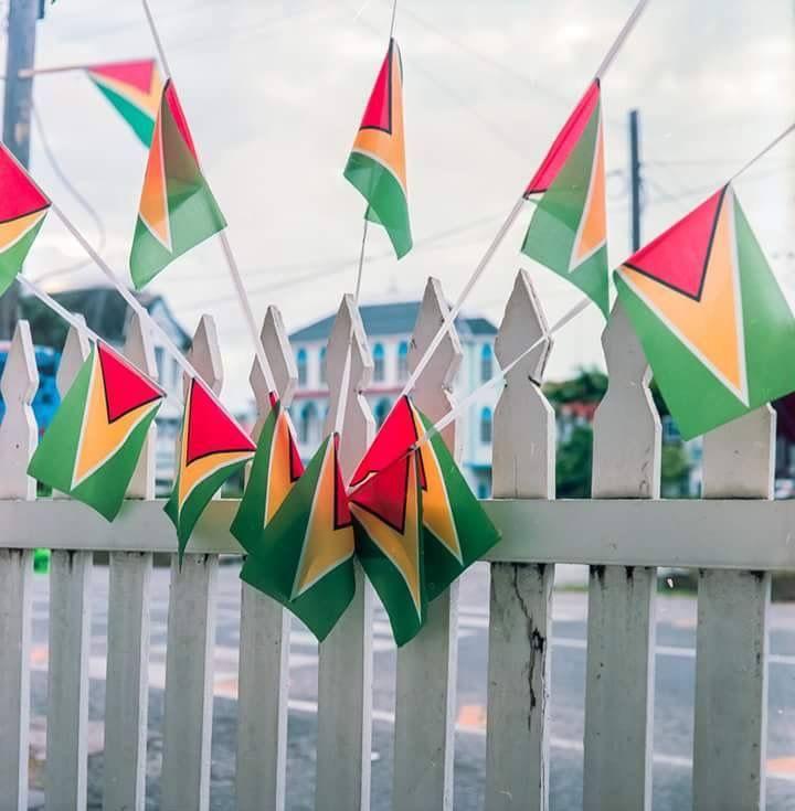 Guyana 🇬🇾 flag