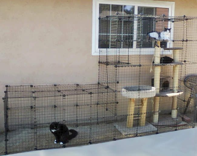 How To Build Your Own Catio From Cat And Caboodle