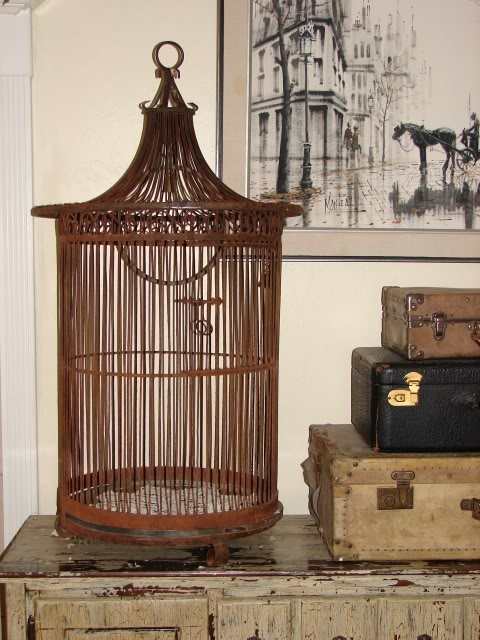Birdcage and luggage obsession