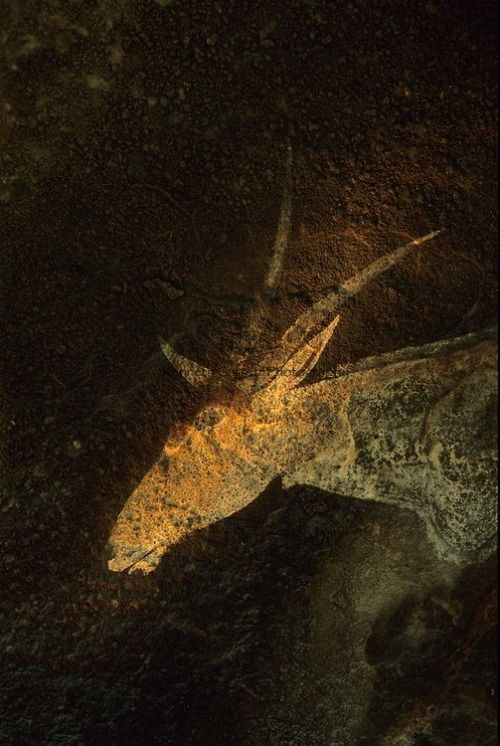 artafrica:  Drakensburg Cave, Rock Art, South Africa by Kenneth Garrett
