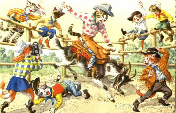 IMAGE(https://i.pinimg.com/736x/4f/a4/fa/4fa4faa002d1d6cfeb5a13b35ff38a19--rodeo-cowboys-cat-lady.jpg)
