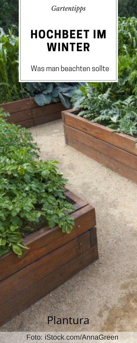 Hochbeet Im Winter Gartengestaltung Garden Backyard Garden