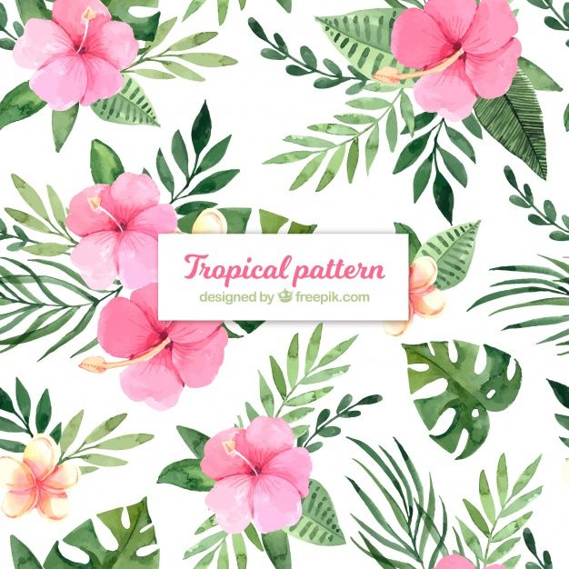 Download Tropical Summer Pattern With Watercolor Flowers For Free