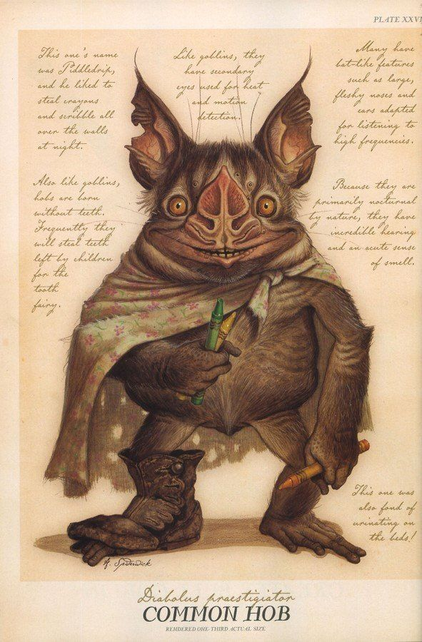 Hobgoblin - Spiderwick Chronicles Wiki - Wikia