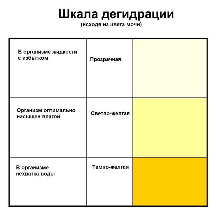 степень дегидрации организма в зависимости от цвета мочи