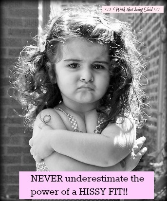 Never Underestimate the power of a Hissy Fit! (Diva in Training!) >>NYC Discount Diva http://stores.ebay.com/NYC-Discount-Diva