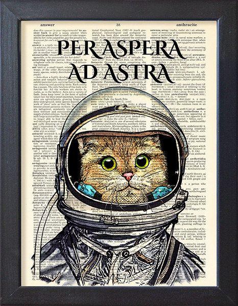 Cat astronaut in space suit Per aspera ad astra by Natalprint