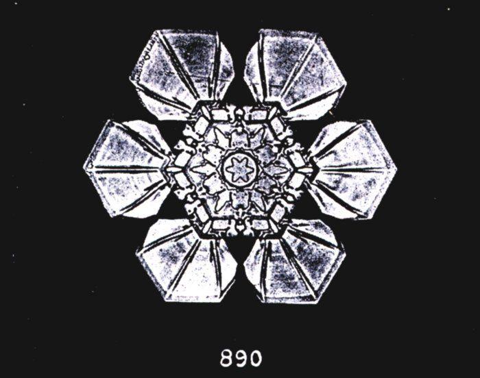 W.A. Bentley. Snowflake