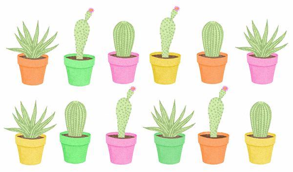 Pics For > Cactus Drawing Tumblr