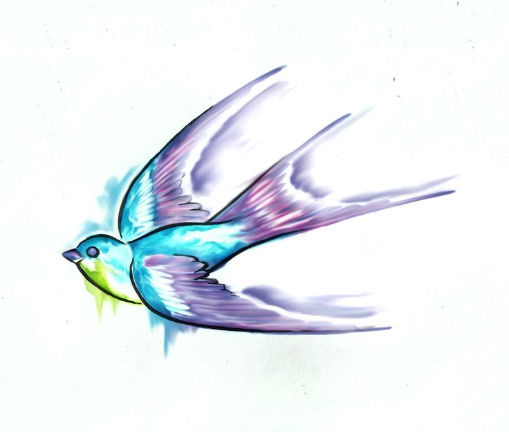 Swallow Tattoo Watercolor Watercolour Ink Drawing