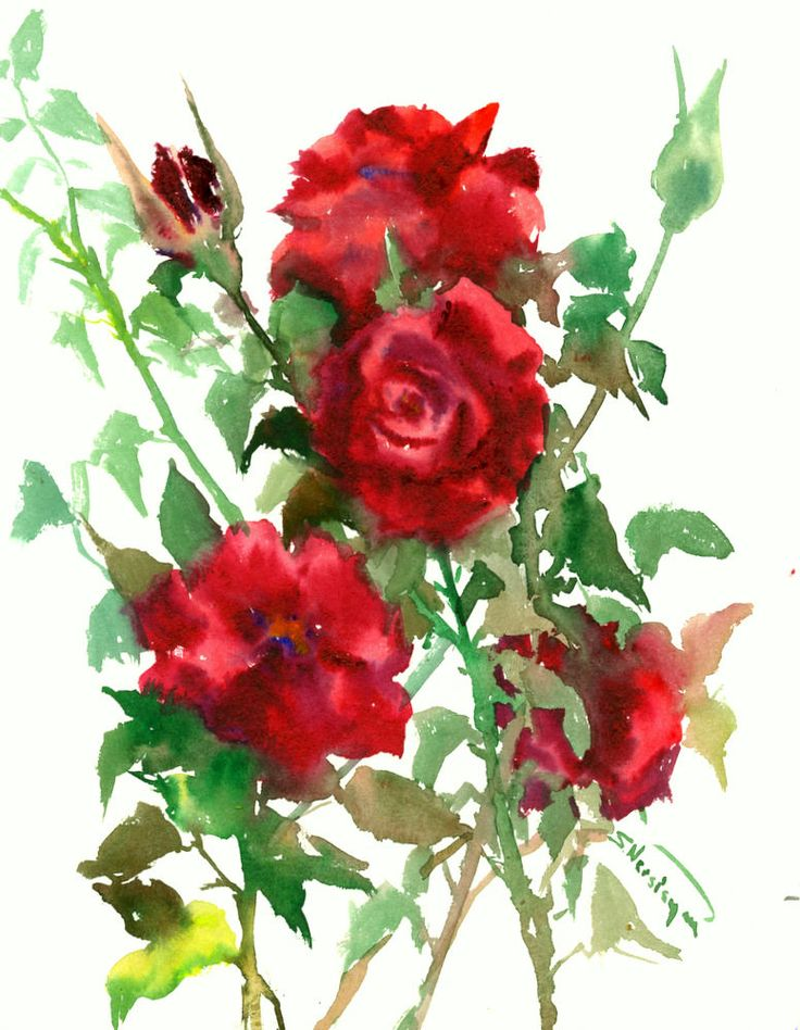 Dark Red Roses Deep Red Red Wall Art Original