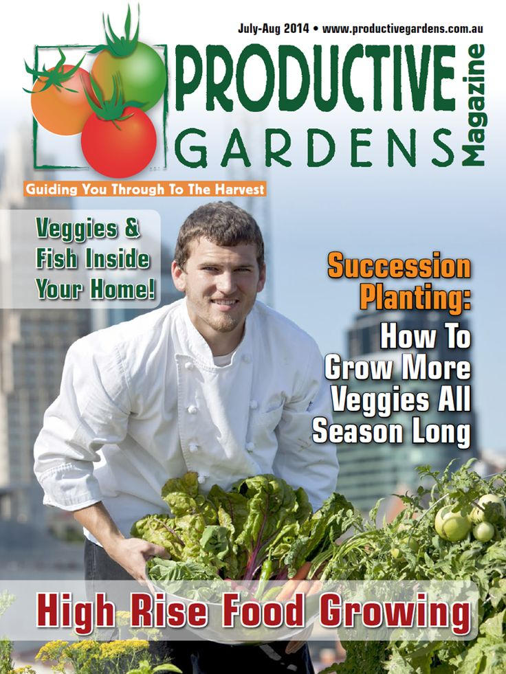 July - August issue