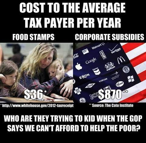 Cost to the average tax payer per year...