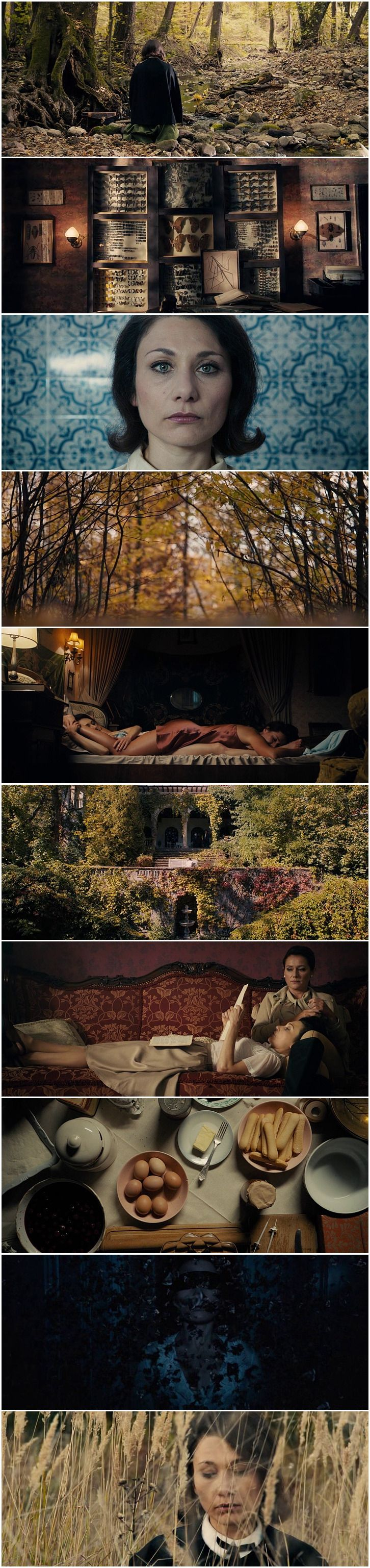 The Duke of Burgundy (2014) || Directed by Peter Strickland || Cinematography by Nic Knowland