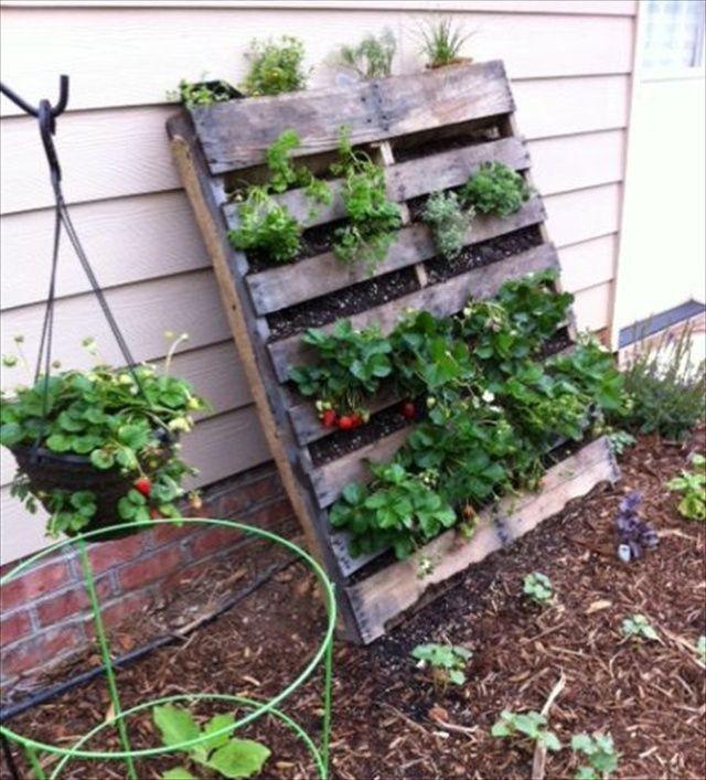 vertical gardens out of pallets   ... Under: Garden Tagged With: DIY Pallet Furniture , Garden , Pallet Use