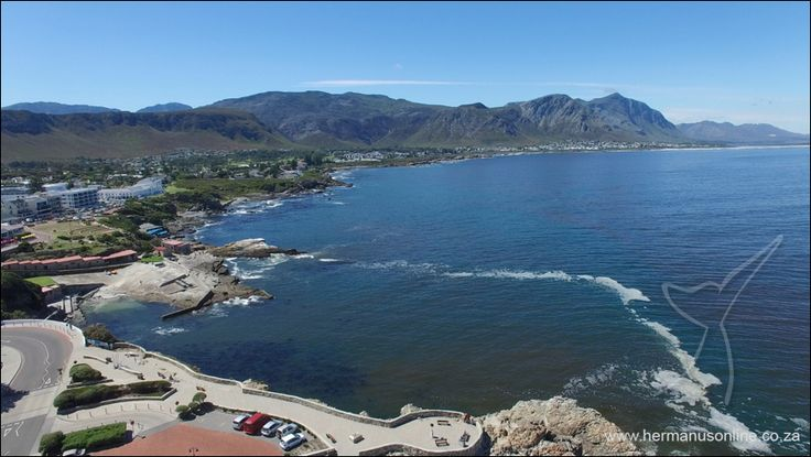 #westcoast #redtide #hermanus The red tide band currently visible in Walker Bay, #Hermanus covers the entire West Coast from Doring Baai southwards into False Bay and Walker Bay as far east as Cape Agulhas.