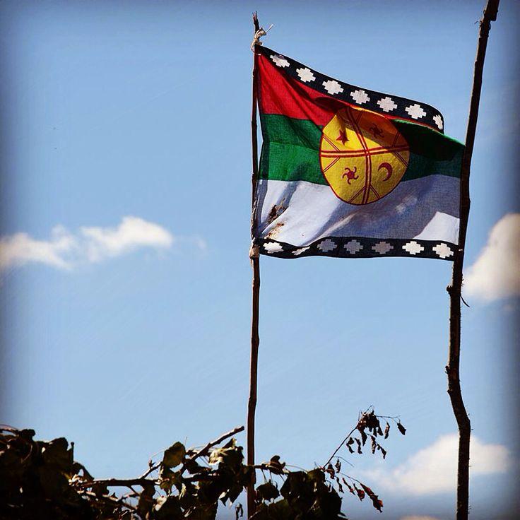 Bandera mapuche (wenufoye)