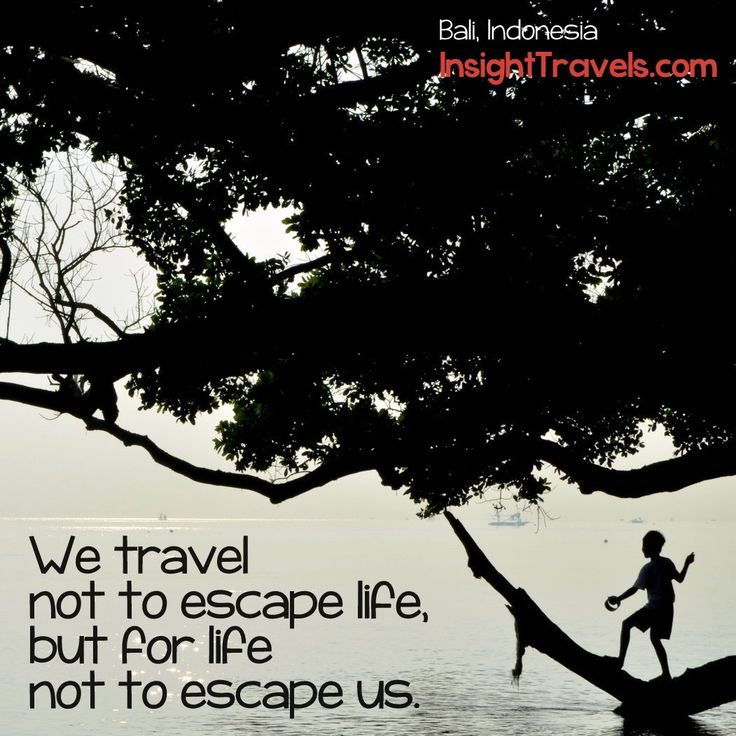 Quotes About Experience And Travel: 36 Best Travel & Experience Quotes Images On Pinterest