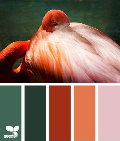 flamingo paletteFlamingos Palettes, Green Orange, Colors Design, Colors Palettes, Colors Schemes, Colours Combos, Design Seeds Com, Flamingos Tone, Colors Inspiration