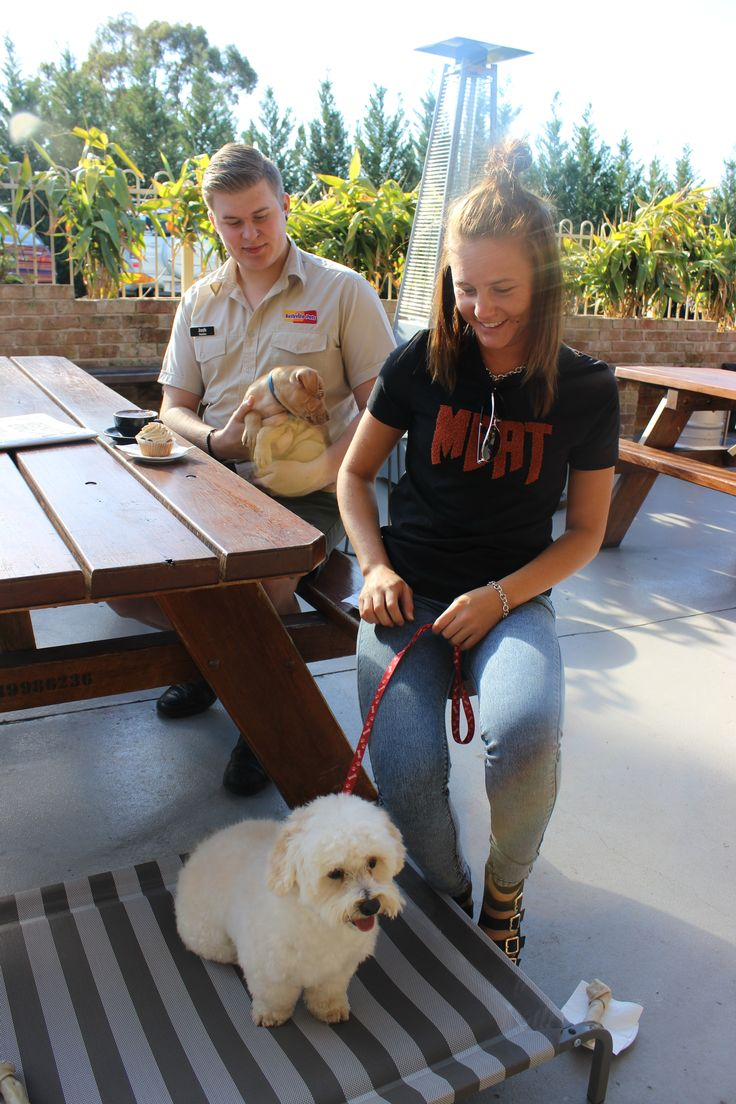 Thank you to Kellyville Pets for sponsoring us! - The Australian Hotel and Brewery