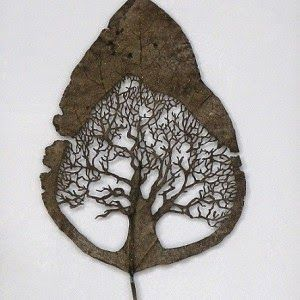 Ultimissime dall'orto: foglie ricamate - by Lorenzo Manuel Duràn