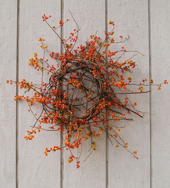 Fresh bittersweet is a beautiful harbinger of the Fall season. Walking along the banks of the Delaware river enjoying the beautiful sunny weather, I found this pretty bittersweet vine draping down everywhere from the lofty heights of trees along the water.    I cut pieces that I could reach and brought them home to make a wreath. With the help of a little rusty wire, I wove the vine into this wonderfully wild Fall creation. The wreath measures 29 by 26  and is 8 3/4  in depth. It may be hung…