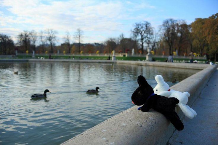4/25今日のリサとガスパール http://parismag.jp/ #舟遊びしたいな #リュクサンブール公園 #JardinduLuxembourg #パリの散歩道  #PARISmag #パリマグ #paris #パリ #France #フランス #パリの住人 #リサとガスパール #GaspardetLisa