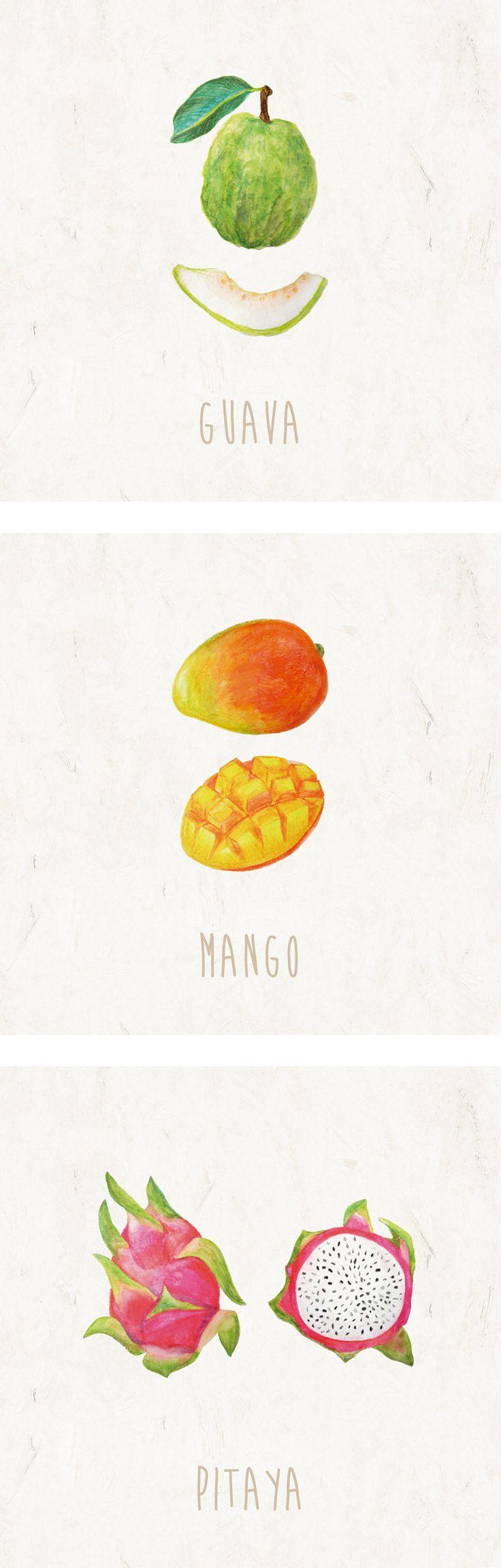 fruits illustration http://oupt.tumblr.com/post/90374439990