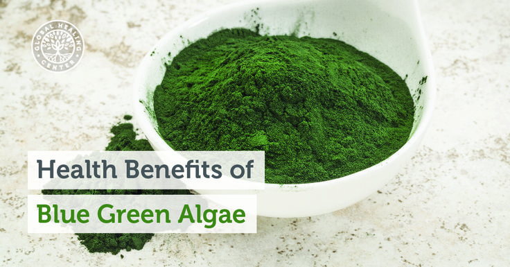 Blue-green algae is one of a nutrient dense superfood with a high concentrations of proteins, vitamins, and free-radical-fighting antioxidants.