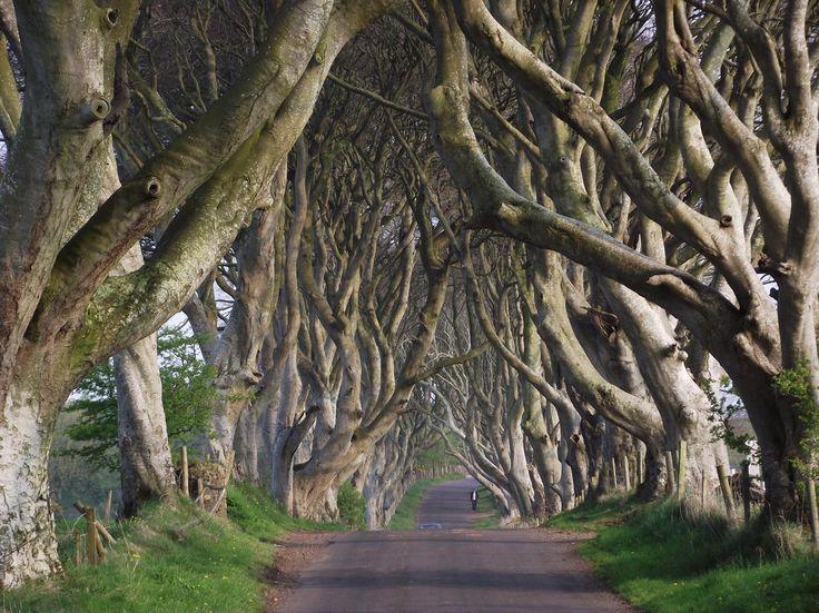 Írország és Észak-Írország