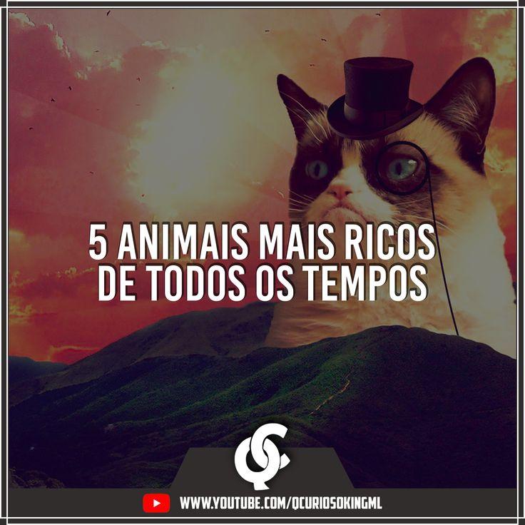 5 animais mais ricos de todos os tempos. Um deles é o lindo gato Grumpy Cat