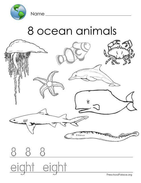 kindergarde ocean activity worksheets miss stephie 39 s classroom mathematics kids stuff. Black Bedroom Furniture Sets. Home Design Ideas