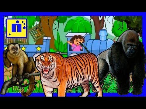 Кто живет в джунглях  / Мультик для детей о животных тропического леса