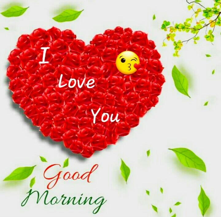 Good Morning Images For Whatsapp Free Download Hd Wallpaper Pictures Photos Of Good Morning Good Morning Images Good Morning Photos Good Morning Love Gif Good morning hd wallpapers free download