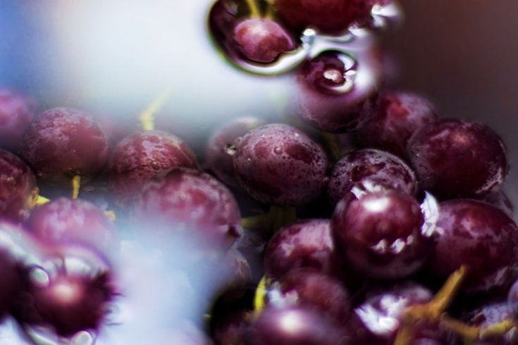 Still Life Photography by Donnie Nunley — Purple Grapes Creative Still Life Photography Ideas