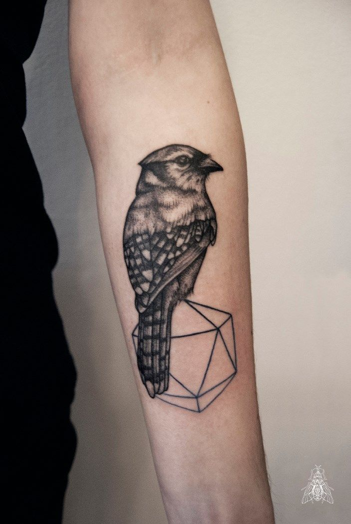 by Mopik, Musca Imago #ink #tattoo