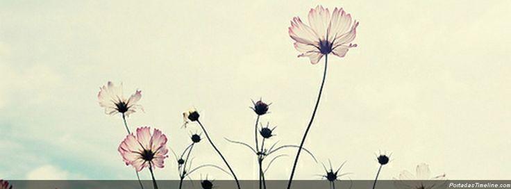Portadas para facebook flores vintage portada para facebook