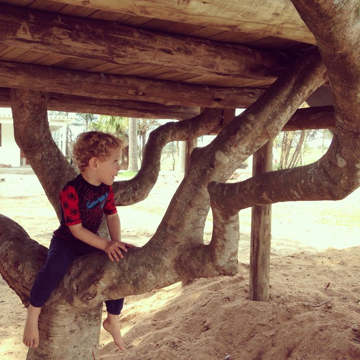 Things to do with kids in durban