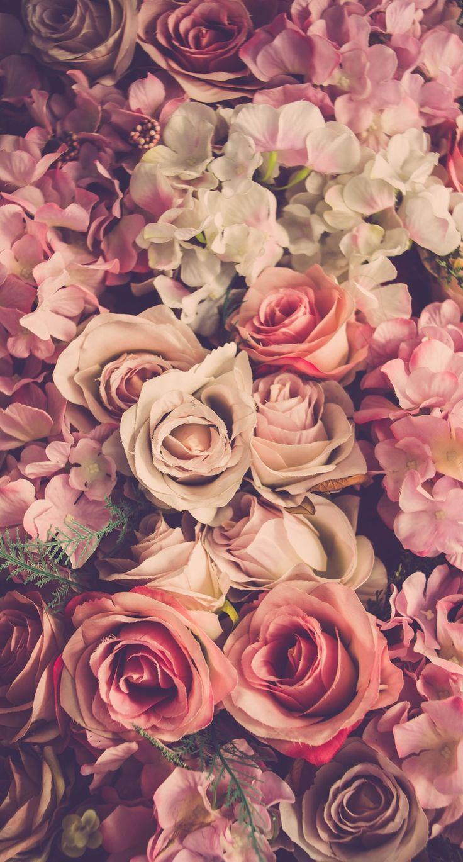 Blumen | floral | blüten | Blumenstrauß | Blumenstrauß | Schnittblumen | DR…..