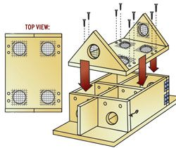 how to build a purple martin house; for mosquito elimination