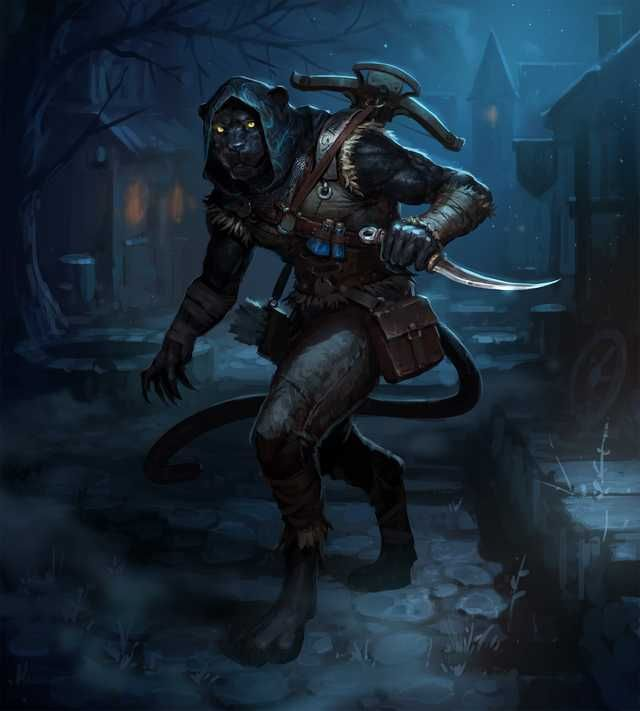 Tabaxi D D Character Dump Dungeons And Dragons Characters Fantasy Character Design Dnd Art Their bodies were slender and covered in spotted or striped. tabaxi d d character dump dungeons