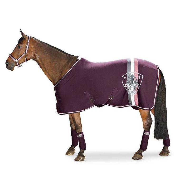 1000+ Ideas About Horse Blanket On Pinterest