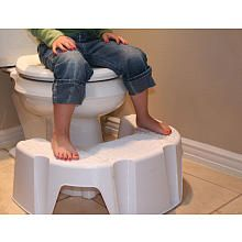 Little Loosteru0027s Looster Booster White - awesome step stool!  sc 1 st  Pinterest & 7 best Where to buy our Looster Booster images on Pinterest ... islam-shia.org