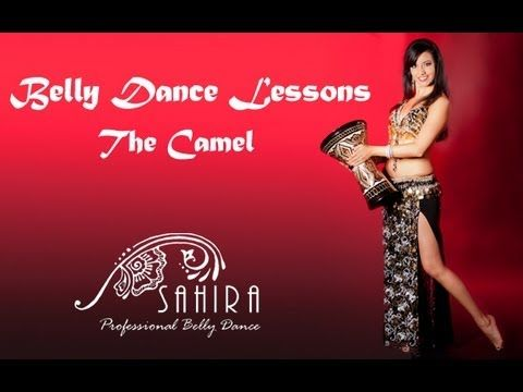Belly Dance Lessons - Camel (+playlist)